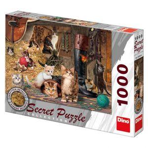 Dino Kočičky 1000D secret collection